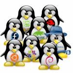 Linux rendszergazda